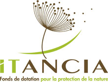 Logo de la fondation Itancia