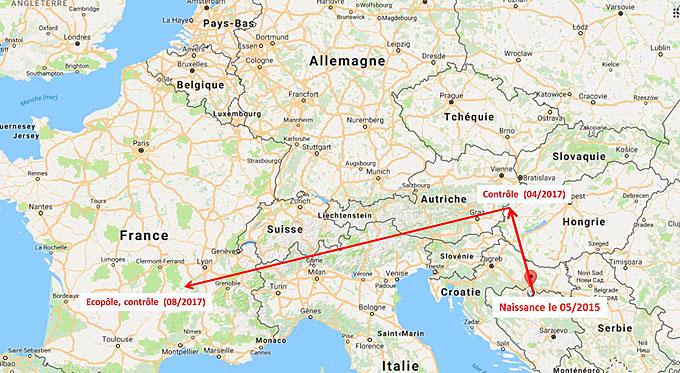 carte du trajet de la grande aigrette